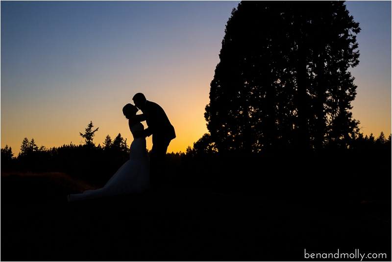 Maple Valley Wedding Photography Olson Mansion Photo (78)