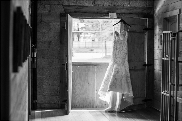 Pine River Ranch Wedding Photographer Photo (1)